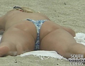 content/110312_voyeur_ass_and_titty_watching_on_south_beach_miami_florida/1.jpg